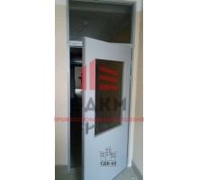 Двери ДНО 21-9 с фрамугой